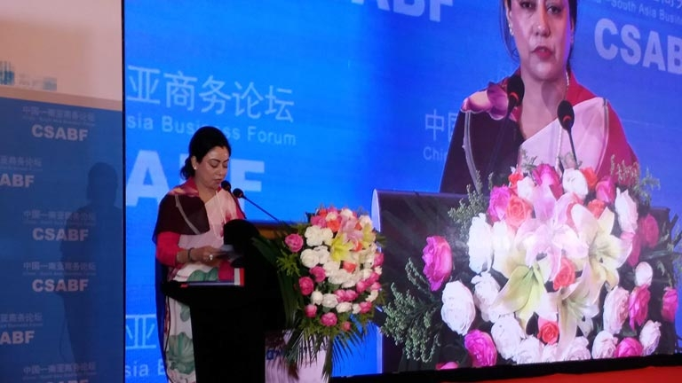 13th China-South Asia Business Forum, Kunming, PR China
